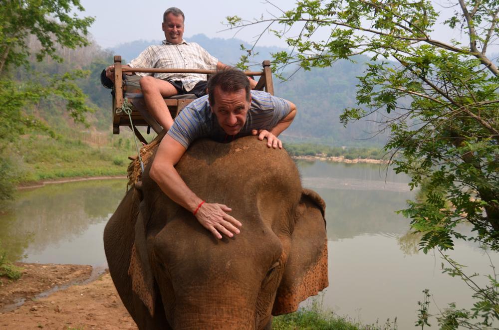 Rendre visite aux éléphants, oui, mais attention