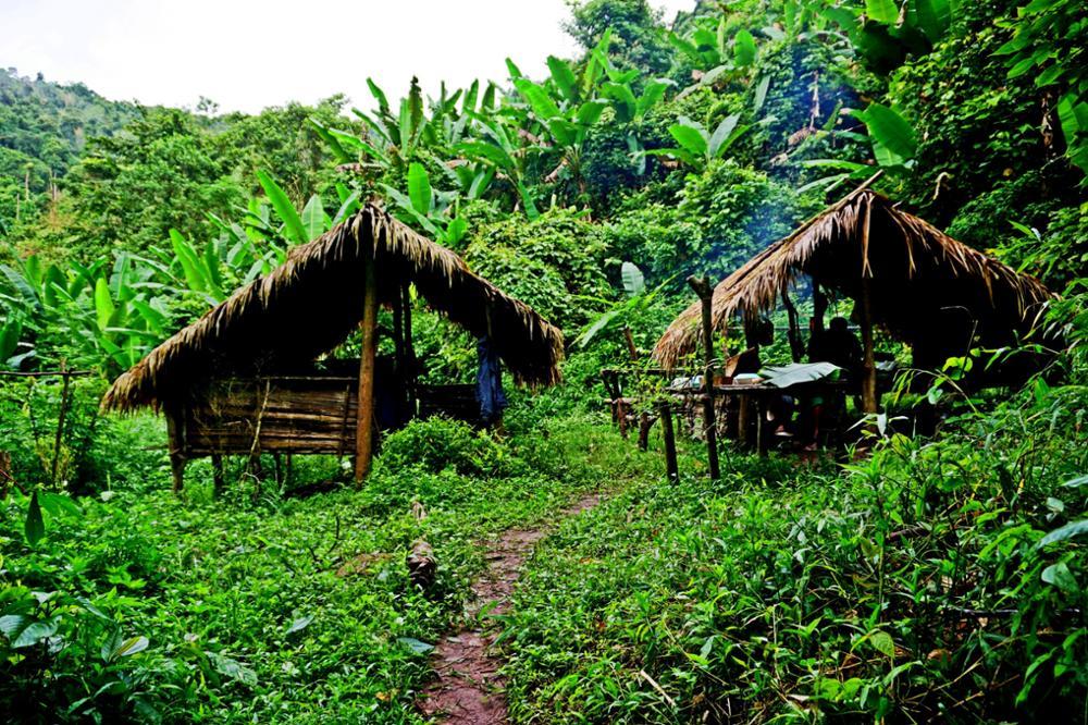 Faire un trek dans le parc national de Nam Ha